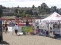 2010 Kitsfest 52